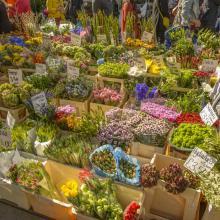 Mercadillo de flores Portobello